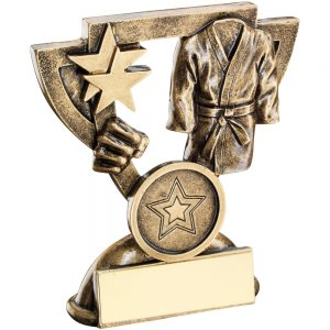 Martial Arts Trophy
