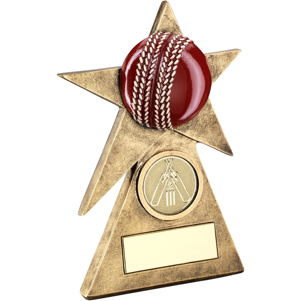 3D Cricket Trophy