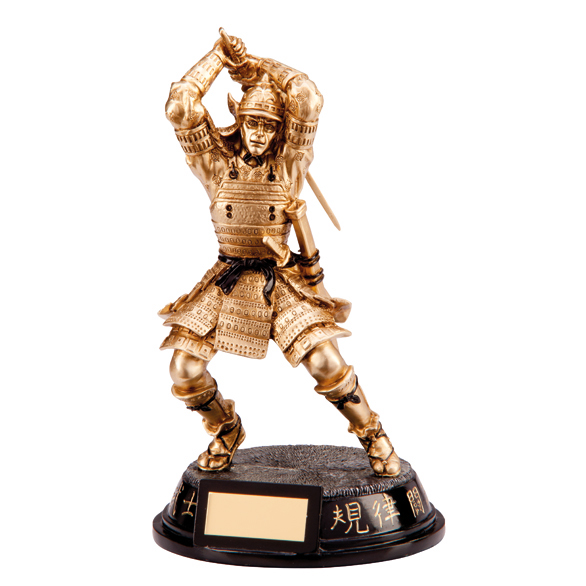 Martial Arts Trophy Warrior