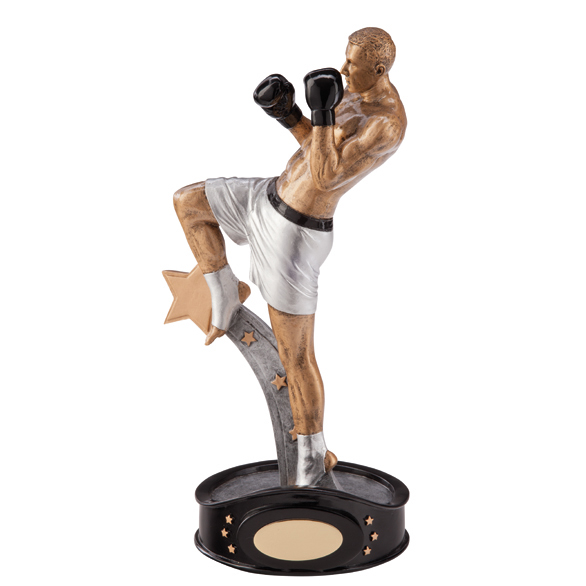 Martial Arts Kick Boxing Trophy