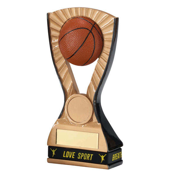 3D Resin Basketball Trophy
