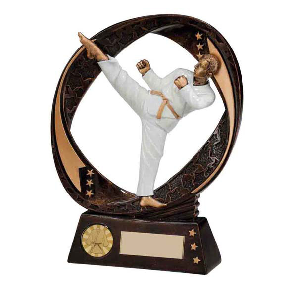 Martial Arts Figure Trophy