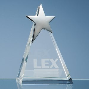 Triangle Silver Star Award