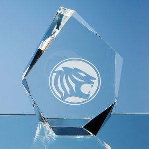 Optical Crystal Facet Iceberg Corporate Award