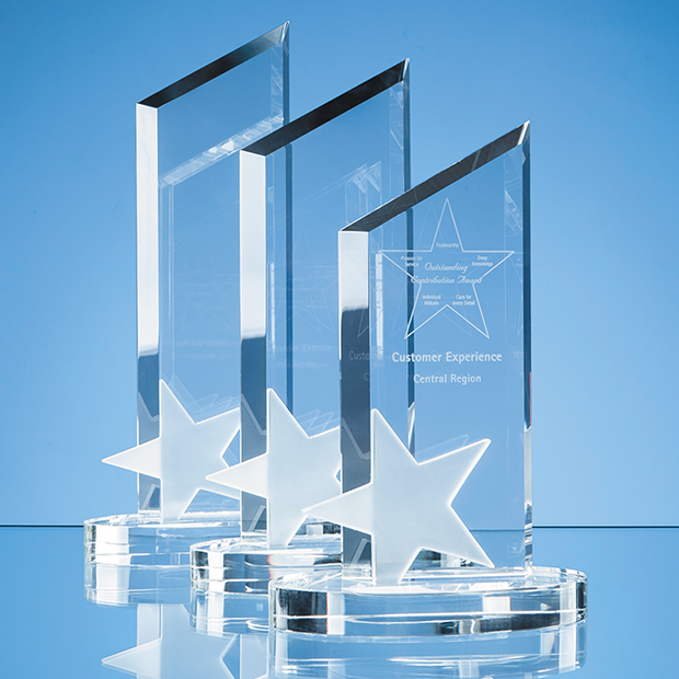 Frosted Star Peak Corporate Award
